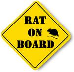 Rat_On_Board