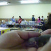 Short but sweet: Baby rat servant who wishes to remain anonymous demonstrates how to stroke a baby to help her quiet down. Exposure to human skin and touch is critical to helping the baby gain trust. Touching is a form of grooming. Watch how baby quiets when her cheeks and ears are stroked. And she rewards her human with little kisses. Videographer is Karen Borga and setting is RodentFest 2009, Leesport, Pennsylvania.