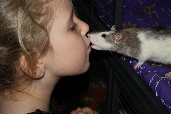 Camie Rat and Jessica kiss. Thanks to Andrea Fuja for permission to post photo.