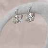3.00ctw Old European Cut Diamond Earrings 2
