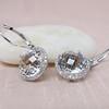 6.68ctw Clear Topaz Halo Earrings 4