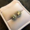 4.05ctw Round Brilliant Cluster Earrings 25