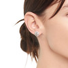 4.05ctw Round Brilliant Cluster Earrings 1