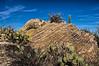 Javelina Rocks in Saguaro NP East - geology on display