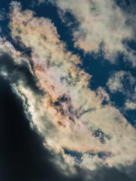 D352-2016  <br /> <br /> Cloud iridescence, Ann Arbor<br /> Taken December 18, 2016 (pm)
