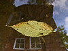 Floating Leaves Series (Nothing is as it Seems) #03<br /> Leaf zeppelin<br /> <br /> Treatment:  Rotated 180 degrees.  The leaf given a touch of poster edges filter on a separate layer.<br /> <br /> Each image in the series is based on a single shot of a leaf or leaves floating over a background of reflected sky or surroundings.  Because it was shot in macro format, the seeming superposition has an other worldly or surreal appearance, as though two or more images were combined.