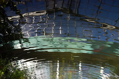 Reflections in water 1 - identifiable objects