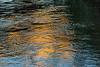 Golden morning light on the river