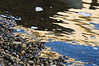 Rocks along the south bank catch the morning light directly, and in reflections from the bridge pillars and facings.<br /> .<br /> Huron River, Ann Arbor, Michigan.<br /> July 13, 2012.<br /> (nex5n)