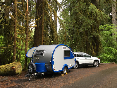 Our camp site in the Olympic National Park