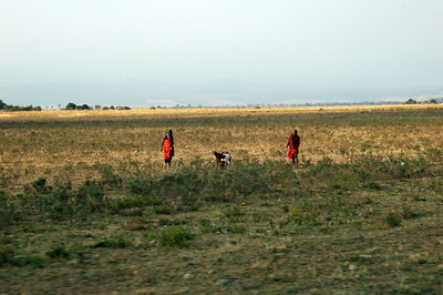 On the drive back to Moshi, we pass some Massai walking across a field.