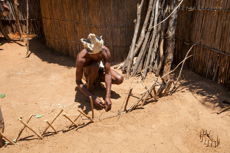 MAFWE LIVING MUSEUM, NAMIBIA - Showing various methods of animal traps and snares.