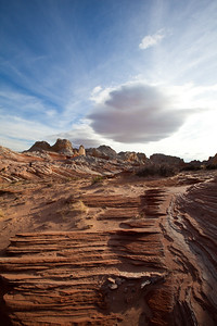 """Stairway"", White Pocket, Paria Canyon/Vermilion Cliffs Wilderness"