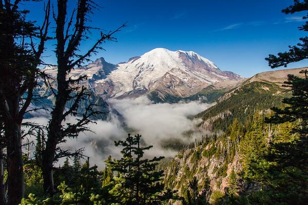 Mount Rainier from the Sunrise Park Road