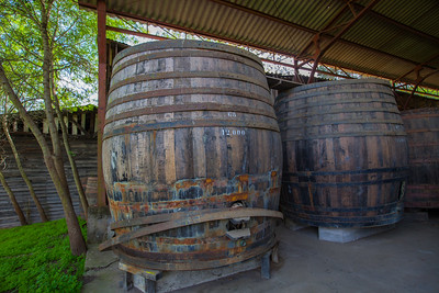 MATETIC VINEYARDS, CASABLANCA, CHILE - Mountainbiking through the vineyards, touring the wine cellar and sampling the wine.