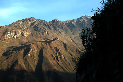 COLCA CANYON, PERU: Steep walls, morning light.