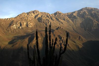COLCA CANYON, PERU: Morning light