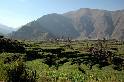 COLCA CANYON, PERU: The top of the canyon, the flatlands covered in fields of corn and the town of Cabanaconde.