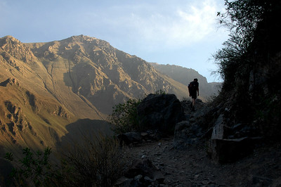 COLCA CANYON, PERU: Forrest Wilder follows the rocky trail along up the steep slope of the eastern canyon wall early in the morning.