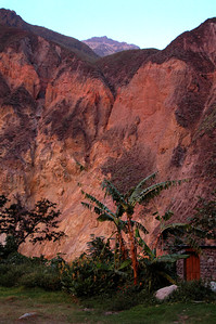 COLCA CANYON, PERU: The pink clouds reflect their light down onto the canyon walls.