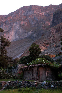 COLCA CANYON, PERU: Evening sunlight painting the canyon wall we hiked down and a flower covered bamboo hut.