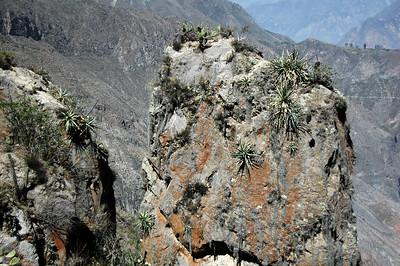 COLCA CANYON, PERU: Rock Pillar.