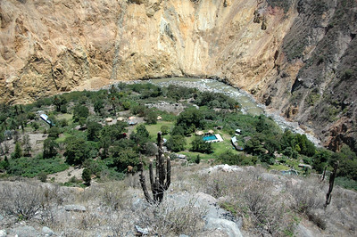 COLCA CANYON, PERU: The verdent canyon floor where straw huts and spring fed pools have been built to accomodate guests.
