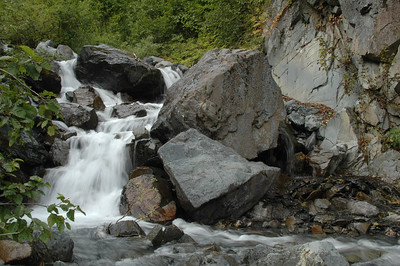 One of the streams along the trail next to Exit Glacier.
