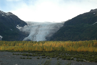 Exit Glacier as seen from the road to the glacier trailhead.