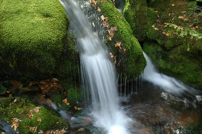 WHITE MOUNTAINS, NH - Lower Mossy Fall in King Ravine.
