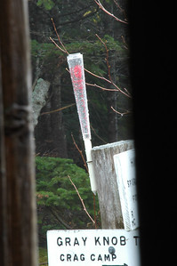 The rain gauge filling up as the wet keeps coming down.