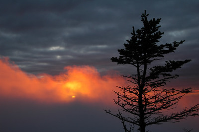 A firey sunset as I walk along the Perch Path back towards Gray Knob Cabin.