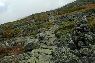 Lots of rock work went into this portion of the Appalachian Trail to make it smooth and easy going. The green Map Lichen carpets the path.