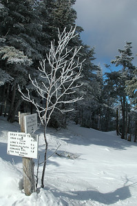WInter has retunded to Gray Knob with fresh snow and the trees frosted anew.