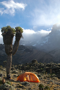 KILIMANJARO, TANZANIA, AFRICA: Home sweet home. Eric and I enjoyed our Marmot Chalet no matter where it was set up... but this was a particularly sweet spot at Barranco Camp.