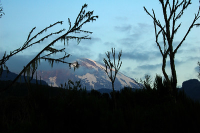 KILIMANJARO: The movement of the sun at the equator is nearly perpendicular to the horizon, so sunset and sunrise are noticeably faster. I only managed to fire a few frames off and the alpenglow was already gone!