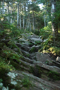 The familiar white blaze of the Appalachian Trail marks the way along this unique section of slanted slabby trail.