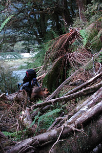 Continuing along against the flow of the Seaforth River, we have to work our way over the debris fields of various landslides and washouts across the trail.