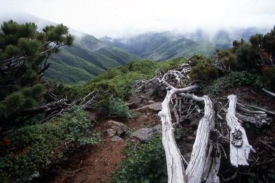 Heading back down fromt the summit of Rishiri-zan.