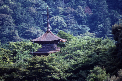 From the Kiyomizu Temple balcony across the gardens.