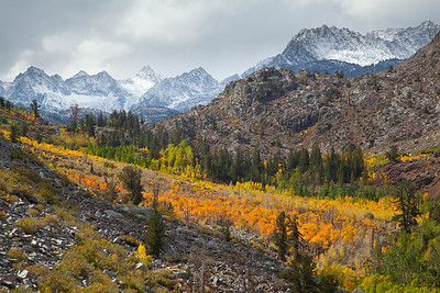 """Valley View"", A crisp October morning in Bishop Creek Canyon with fall color in the Aspens and an early snow on the surrounding peaks."
