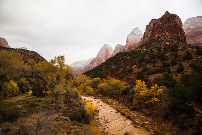 Early morning snow along the Virgin River, Zion National Park