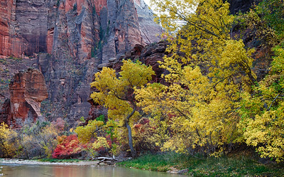 The Virgin River and The Pulpit at The Temple of Sinawava, Zion National Park
