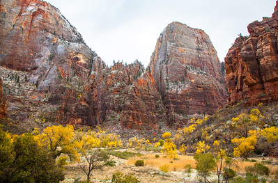 A dusting of snow on The Great White Throne, Zion National Park