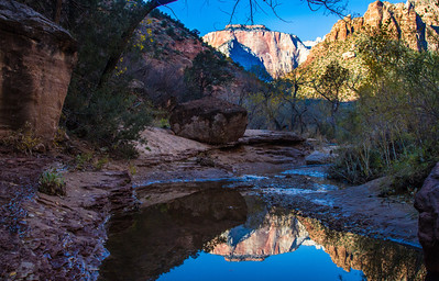 Early morning reflections in Pine Creek, Zion National Park