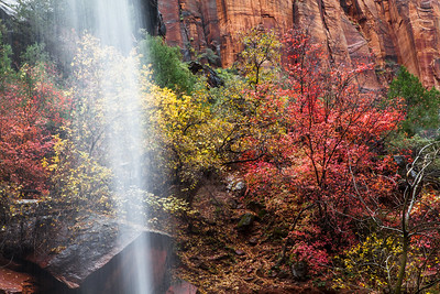 Waterfall & fall colors in Zion Canyon, Zion National Park