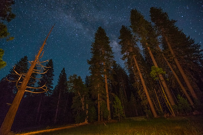 """High Sierra Night"", a mountain meadow outside Yosemite with the milkyway visible."