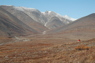 Forrest sits above Grouse Creek and heads up into the Kigluaik Mountains, a 42 mile mountain chain on the Seward Peninsula.