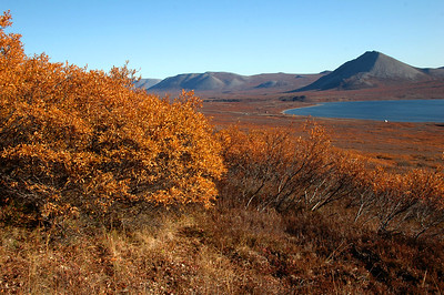 Great fall colors out on the tundra as we head back to camp to pack up and head back to Nome.