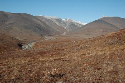 Forrest follows Grouse Creek and heads up into the Kigluaik Mountains, a 42 mile mountain chain on the Seward Peninsula.